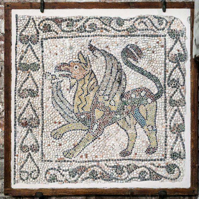 Lacerto musivo pavimentale medievale (XIII sec.): un animale fantastico